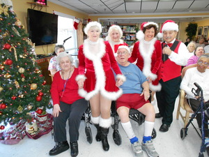 Tapsations Meet the residents Christmas 2015v